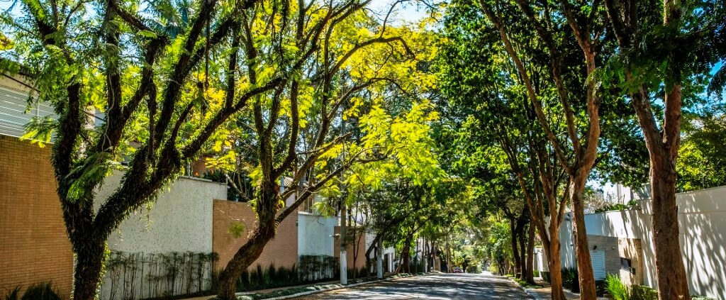 Foto Texto Paisagismo 01 - Quartier Brooklin: A natureza como protagonista do projeto
